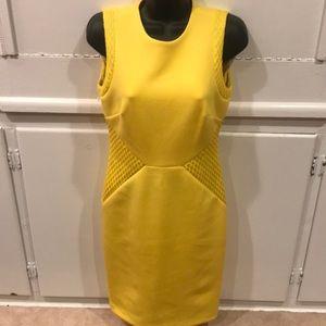 Calvin Klein Yellow Sleeveless Bodycon Dress SZ 2